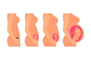 怀孕多久挂产科