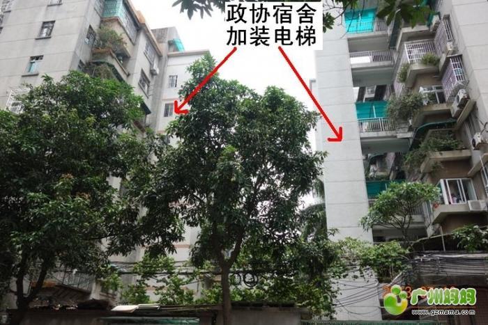 政协宿舍1.JPG