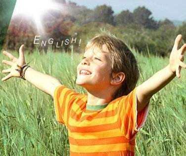兰迪少儿英语、鲸鱼外教培优、久趣英语、魔力耳朵对比分析