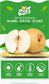 19.9元5斤砀山酥梨