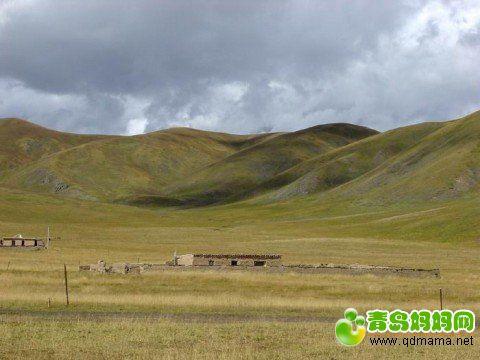 学校周围的草原.jpg