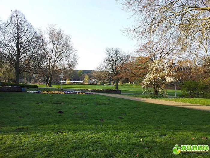 公园小景.jpg