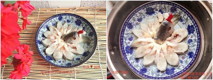鱼2.jpg