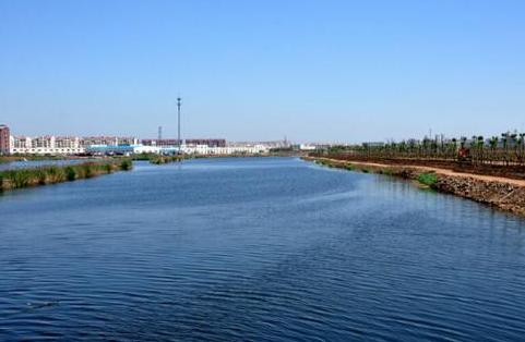 花海湿地.png