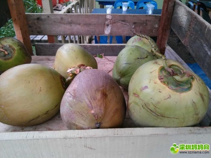 好大个的椰子,3马币一个!第一天的12马币一个!真黑!