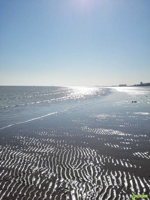 初見東疆港海灘.jpg