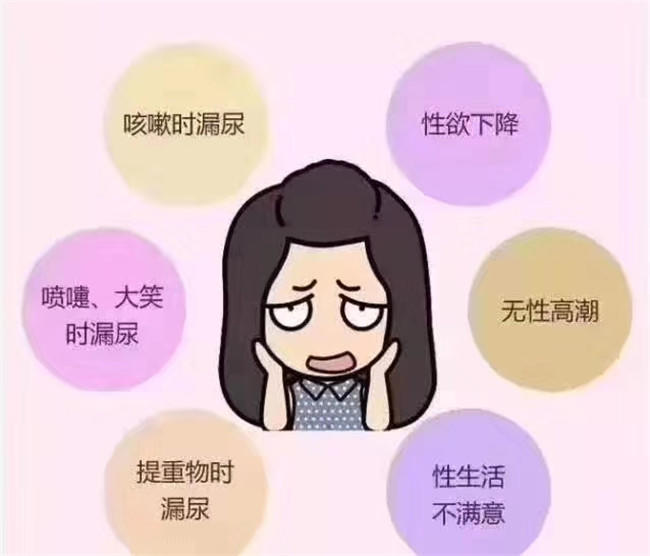 盆底肌2_副本.jpg